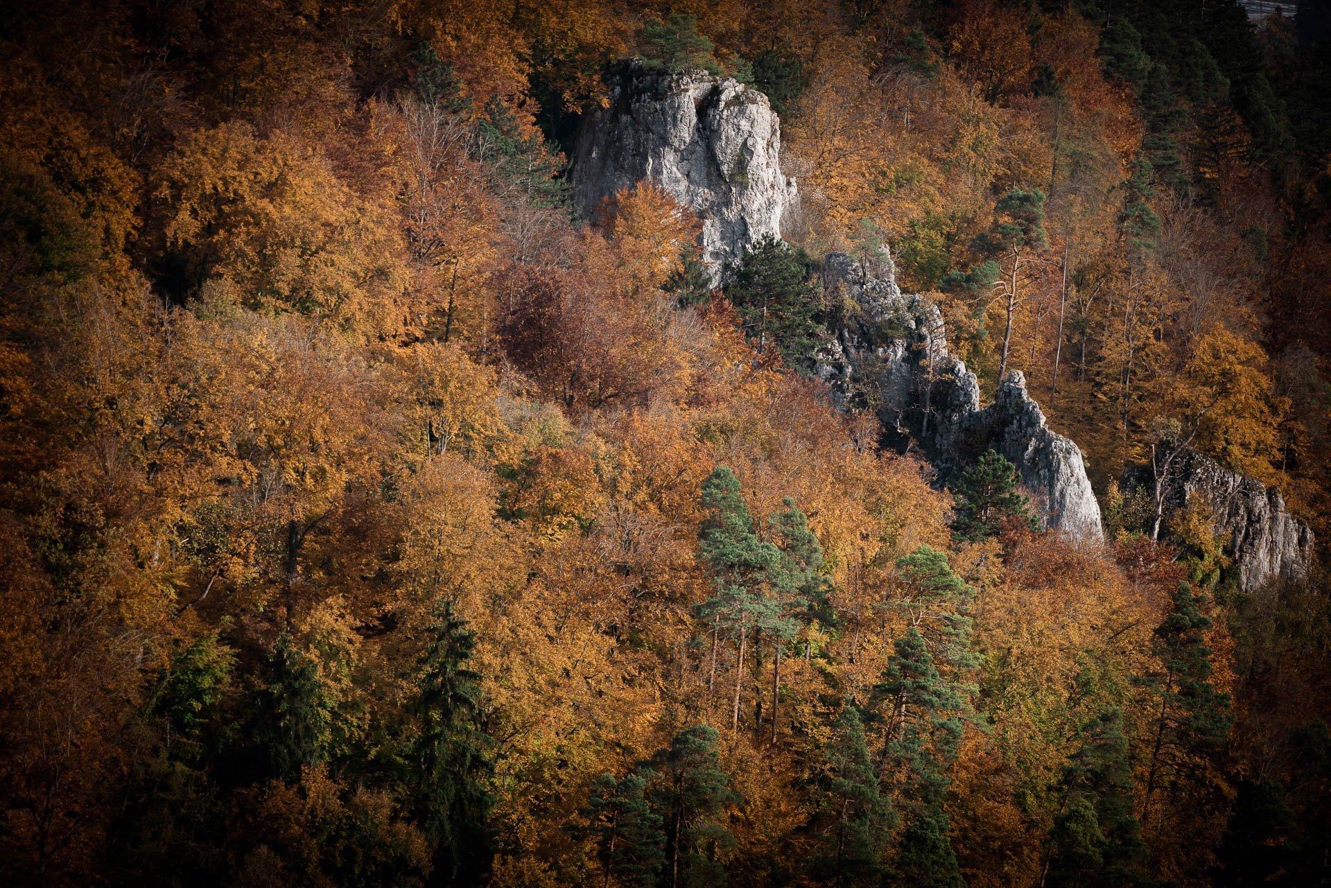 Herbst in Blaubeuren
