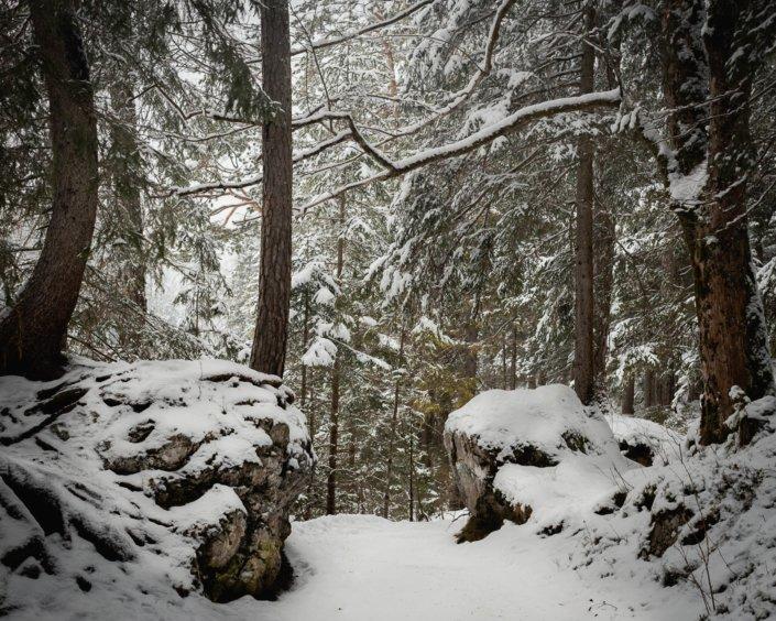 Der Weg zum Eibsee bei Grainau