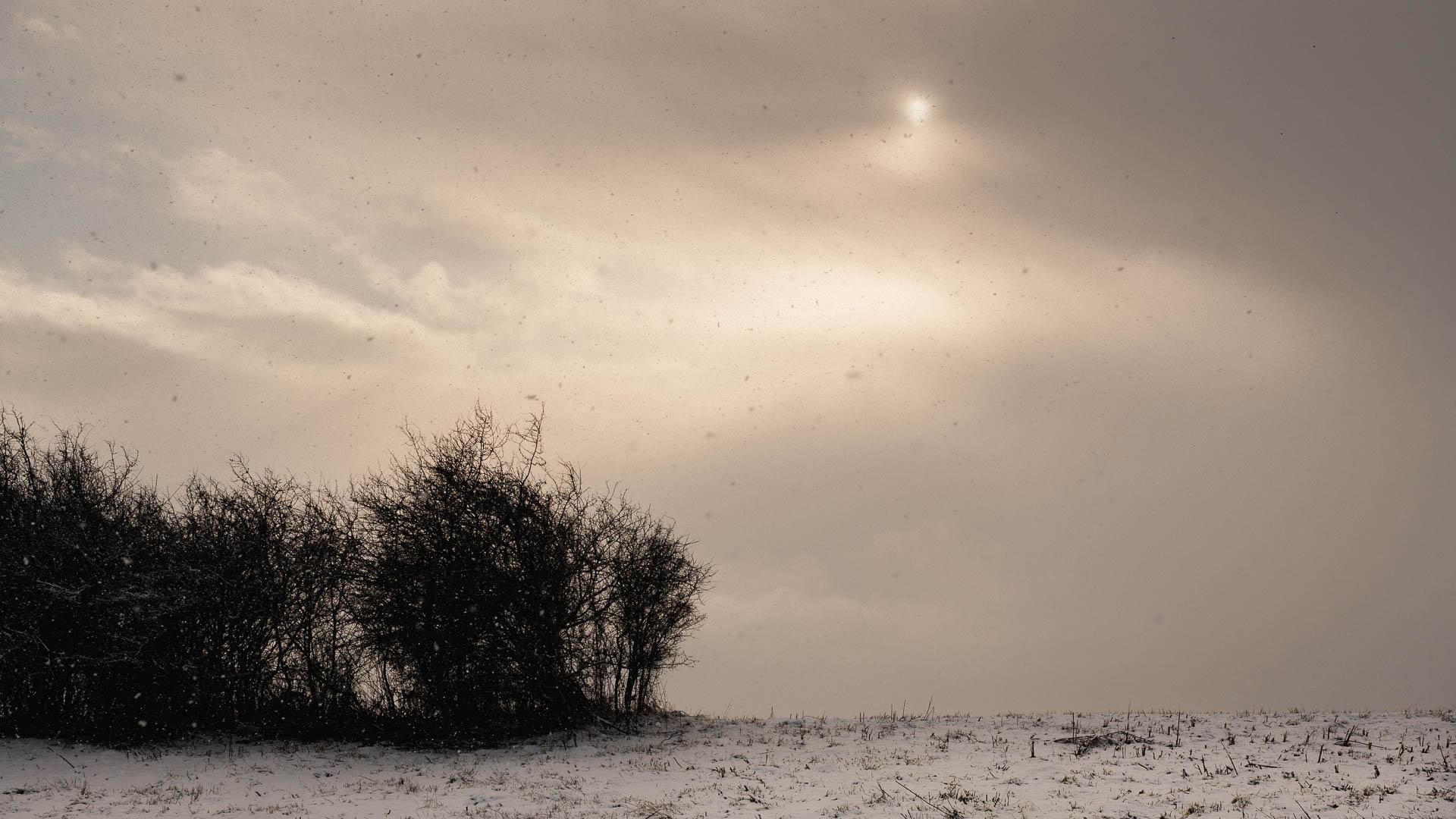 Sonne gegen Schneegestöber